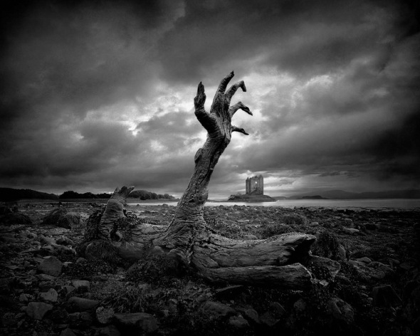 Dead_Tree_The_Epic_Wallpaper_Collection-s1280x1024-87752